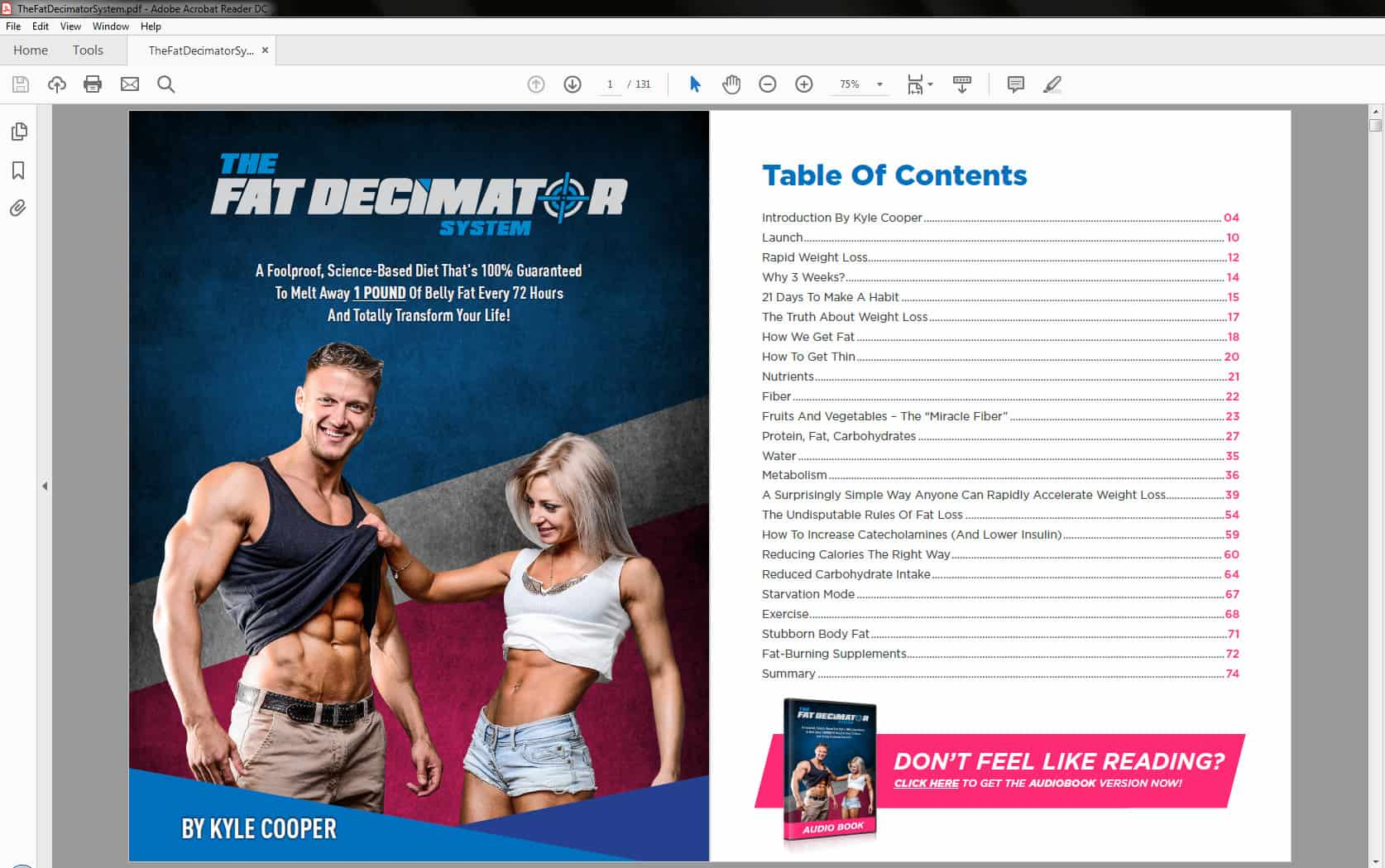 The Fat Decimator System's Table of Contents