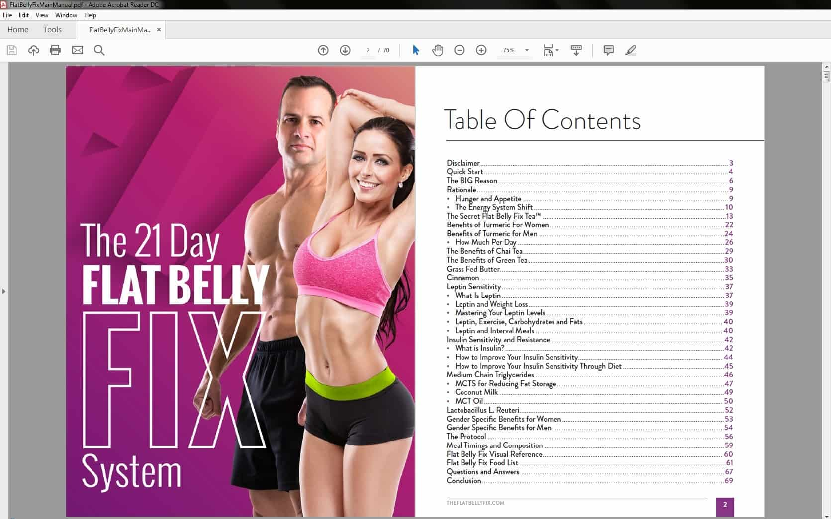 The Flat Belly Fix Table of Contents