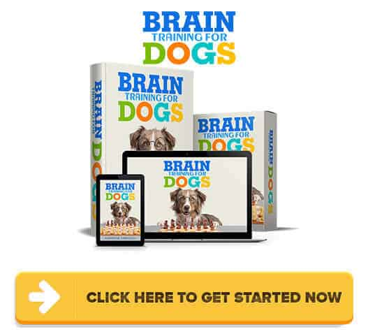 Brain Training For Dogs Review: Abuse & Cruelty To Train