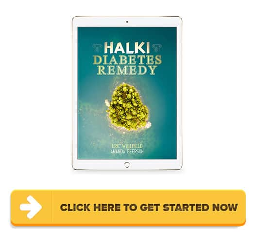 Halki Diabetes Remedy Review: What's the