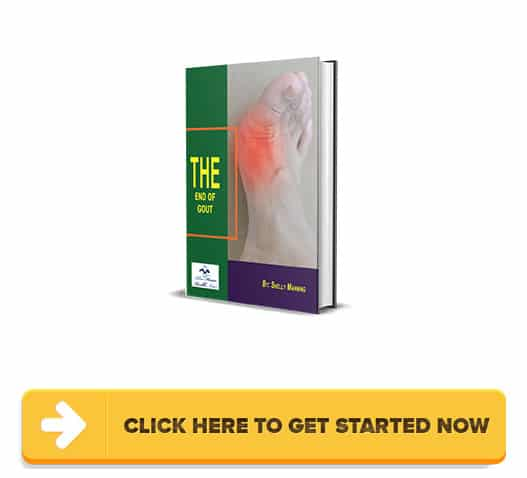Download The End of Gout PDF