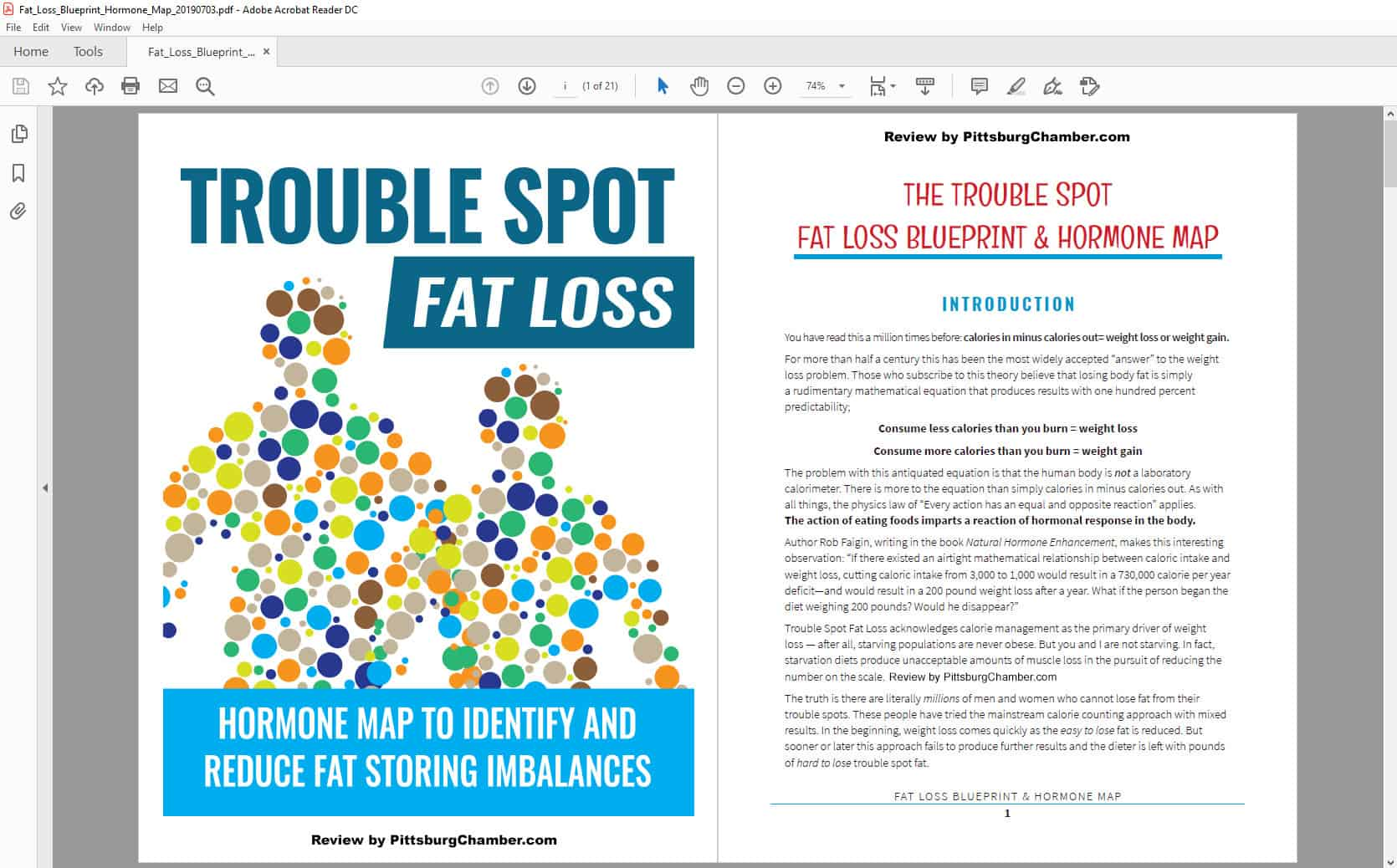 Trouble Spot Fat Loss System Table of Contents