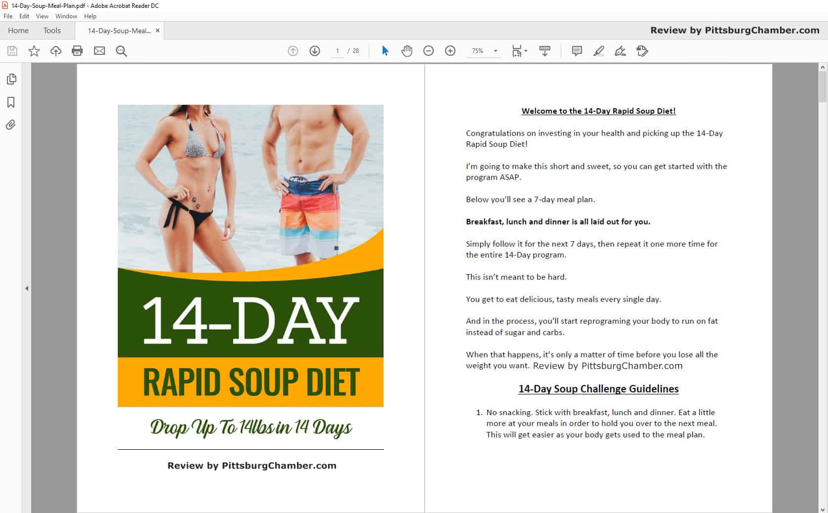14-Day Rapid Soup Diet Table of Contents