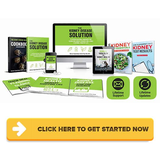 Download The Kidney Disease Solution PDF