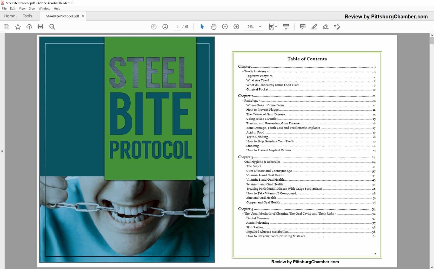 Steel Bite Protocol Table of Contents