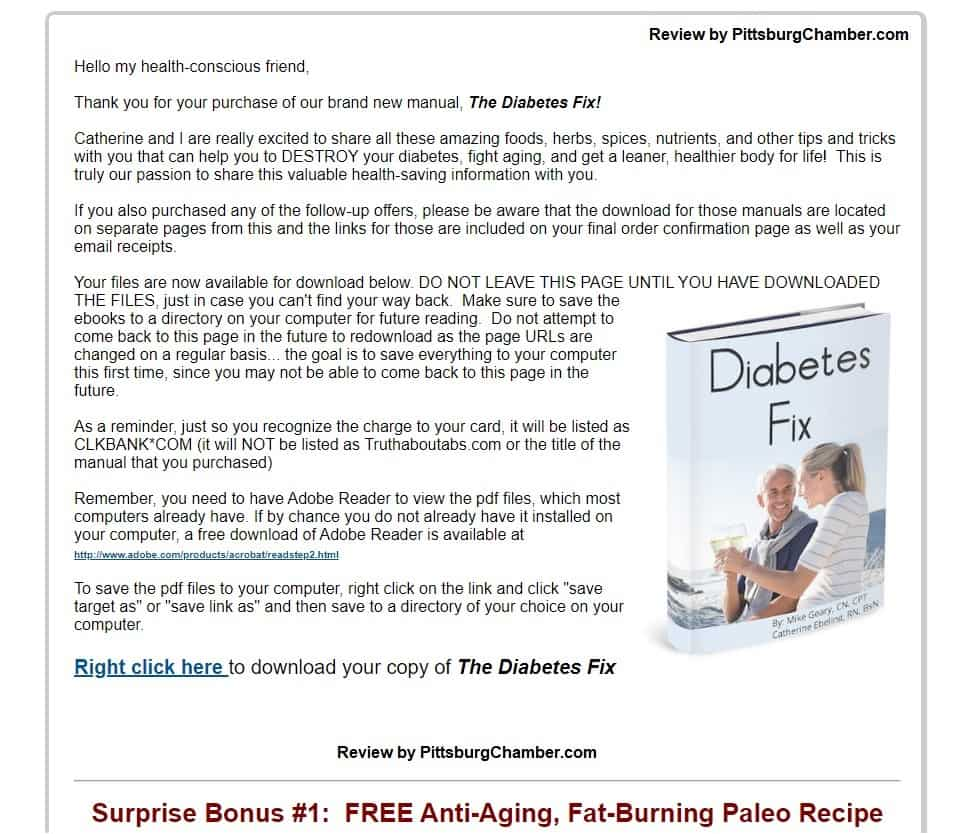 The Diabetes Fix Download Page