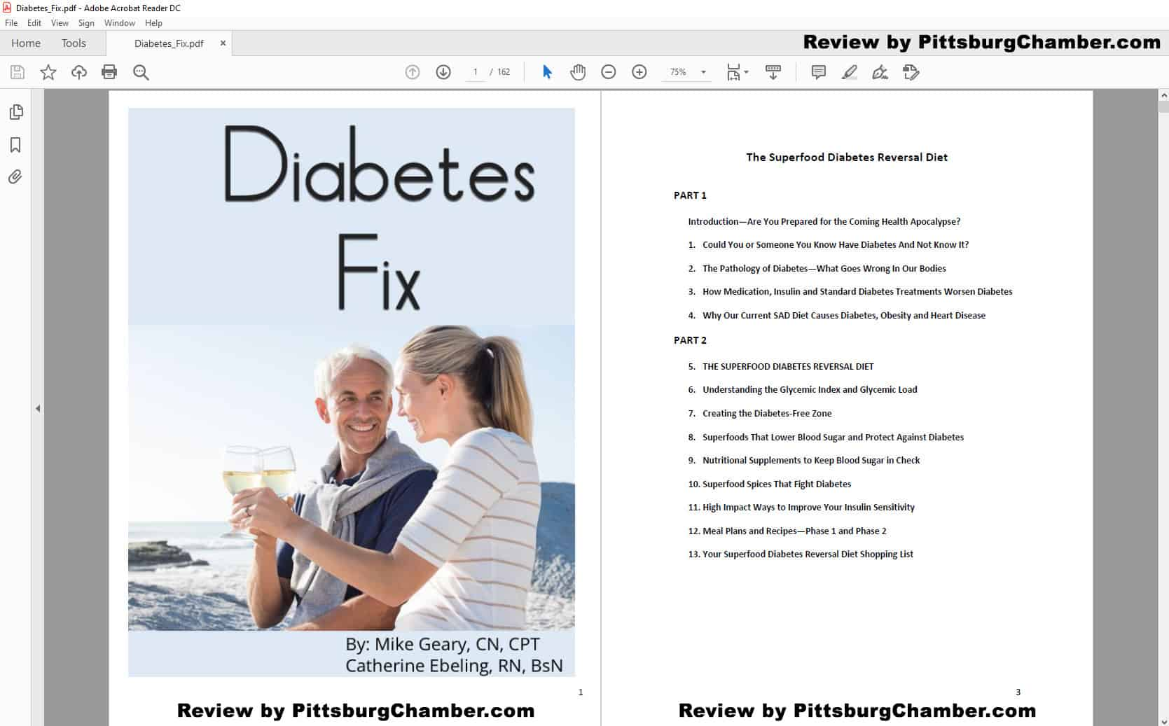 The Diabetes Fix Table of Contents